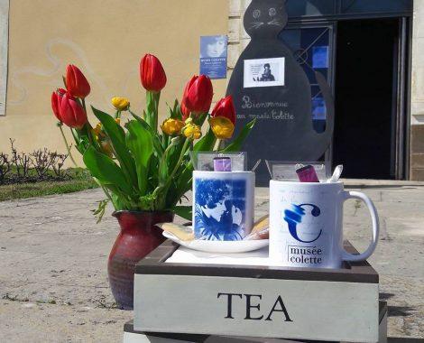Musée Colette - salon de thé